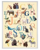 Our Animal Multicolor Alphabet On Canvas Children's Wall Art