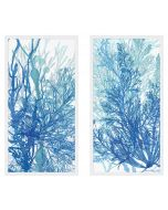 Set of Two Indigo Coral Framed Wall Art