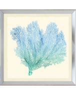 Teal & Blue Gradient Sea Fan IV Framed Wall Art-Available in a Variety of Sizes