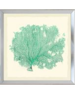 Teal Sea Fan Framed Wall Art-Available in a Variety of Sizes