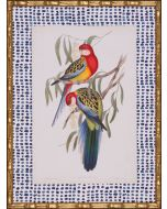 Tropical Parrots IV Wall Art With Blue Spotted Matte in Gold Frame