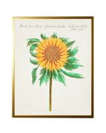 Vintage Bookplate with Sunflower Wall Art with Size and Frame Options