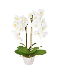 Faux White Orchid in a White Flower Pot