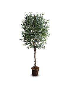 8 Foot Tall Faux Olive Tree - ON BACKORDER UNTIL LATE SEPTEMBER 2021