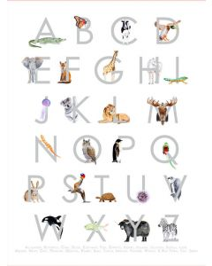 Animal Kingdom ABC's - Gray Wall Decal Cut-Outs