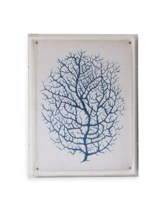 Blue Coral III Giclee Print in Lucite Shadow Box