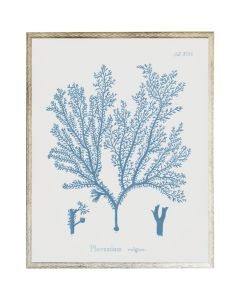 Blue Coral Wall Art 1 with Size and Frame Options