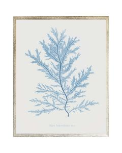 Blue Coral Wall Art 2 with Size and Frame Options