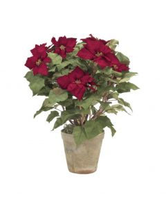Classic Red Holiday Faux Poinsettia in a Mossed Terracotta Pot