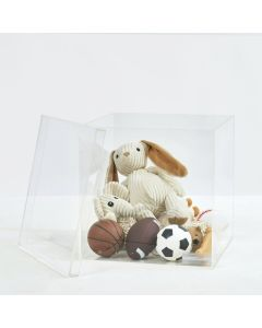 """14"""" Clear Storage Box with Separate Top"""
