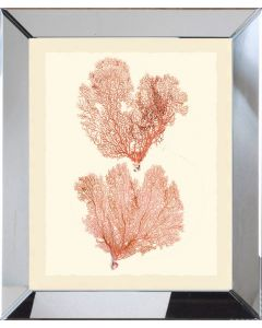Double Pink Seafan Framed Wall Art-Available in a Variety of Sizes