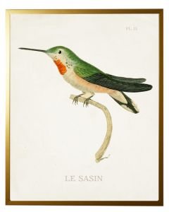 Hummingbird Wall Art 1 With Size and Framing Options