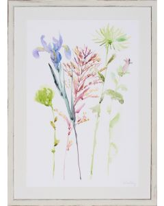 Limited Edition Pastel Watercolor Floral Study III Wall Art in Whitewashed Frame