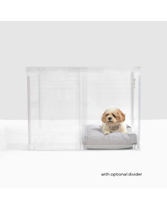 Medium Clear View Dog Crate to Gate