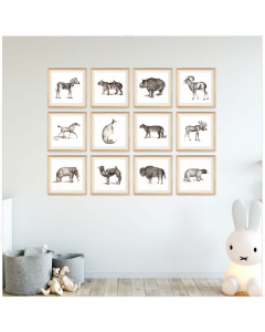 Young Animals Collection