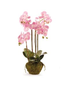 """BARGAIN BASEMENT ITEM: Phalaenopsis 30"""" Faux Orchid Drop-In - IN STOCK IN GREENWICH, CT FOR QUICK SHIPPING"""