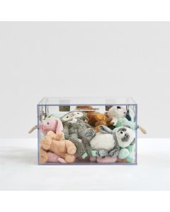Rectangular Clear Storage Trunk with Rope Handles