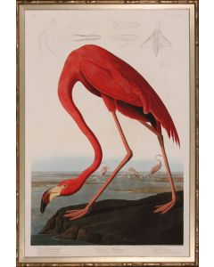 Red Flamingo Giclee Wall Art in Bamboo Inspired Frame