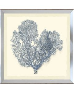 Sea Fan I Framed Wall Art-Available in a Variety of Sizes