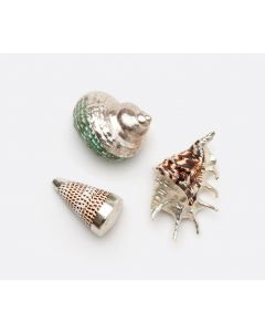 Set of 3 Mixed Shells With Silver Accent