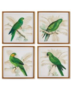 BARGAIN BASEMENT ITEM: Set of 4 Green Parrot Study Framed Prints - IN STOCK IN GREENWICH, CT FOR QUICK SHIPPING