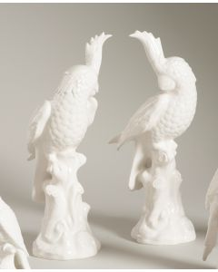Set of Two Hand Painted Ceramic Parrots in White