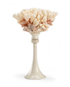 Tall Baby Pink Natural Coral with Antique White Stand
