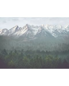 The Great Mountains and Woodlands Wall Decal