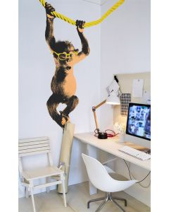 Too Hip To Be Square Monkey Wall Decal Cut-Out Wall Art