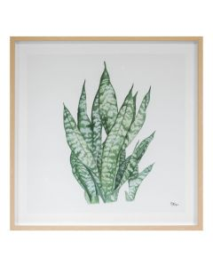 Tropical Botanicals 3 Framed Wall Art - Available in 2 Sizes