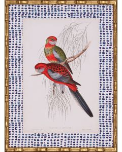 Tropical Parrots III Wall Art with Blue Spotted Matte in Gold Frame