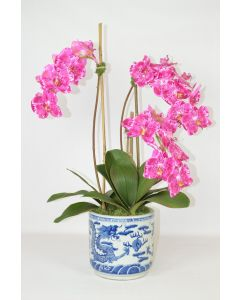 Fuschia Faux Orchid Plant in Large Blue and White Porcelain Planter