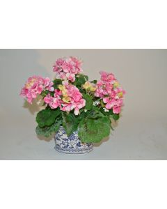 Pink Geraniums in Blue and White Ceramic Pot