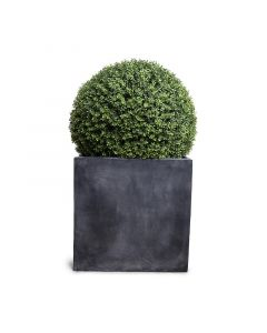 28 Inch Faux Boxwood Ball in Grey Square Pot
