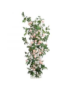 72 Inch High Climbing Pink Rose Stem Trellis