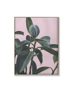 Banana Leaf on Pink 3 Digital Print On Canvas Framed Wall Art