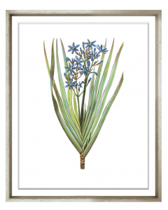 Bessa Blue Flower Framed Wall Art II