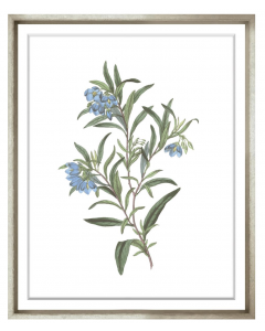 Bessa Blue Flower Framed Wall Art III