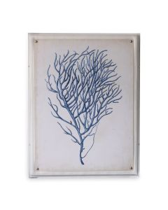 Blue Coral I Giclee Print in Lucite Shadow Box