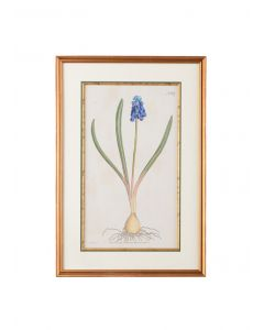 Blue Floral Botanical Wall Art Framed in Antique Gold - ON BACKORDER UNTIL JULY 2020