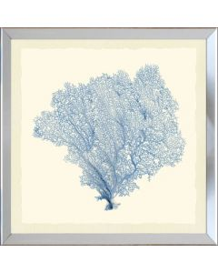 Blue Sea Fan Framed Wall Art-Available in a Variety of Sizes