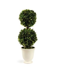Boxwood Double Ball Topiary In Beaded White Pot -ON BACKORDER UNTIL MARCH 2021