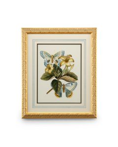 Butterfly Oasis Framed Wall Art IV