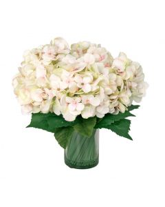 Crisp White Hydrangea in Glass Container