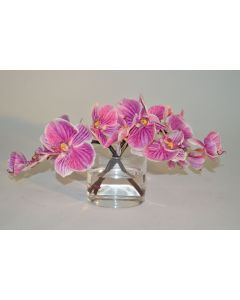 Fuchsia Orchids in Short Glass Vase