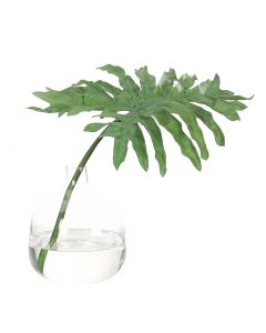 Faux Philodendron Selloum Leaf in Glass Bottle