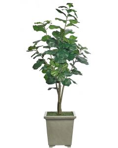 Faux Fiddle Leaf Tree in Tapered Square Container