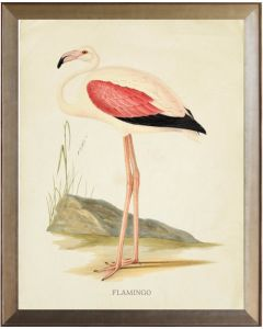 Flamingo With Pink Wing Framed Wall Art With Size and Framing Options