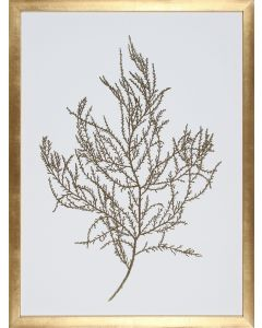Gold Foil Algae III Wall Art