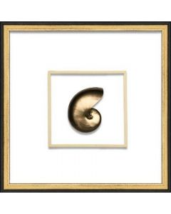Gold Nautilus Shell Coastal Beach Wall Art in Black & Gold Frame